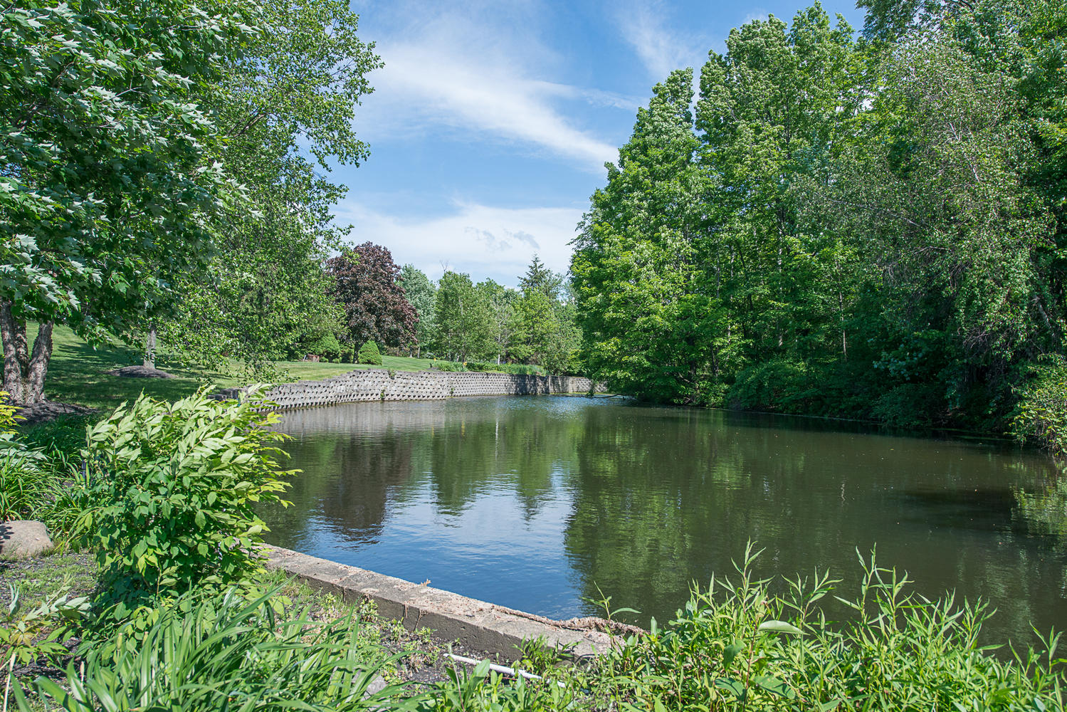 6523 Boston State Road Hamburg-large-025-25-Pond-1499×1000-72dpi