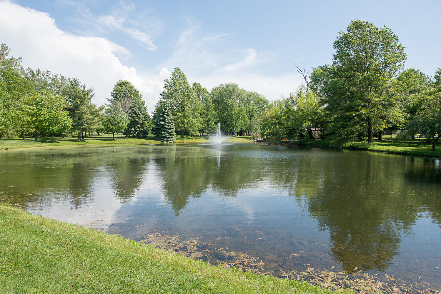 6523 Boston State Road Hamburg-large-030-30-Pond-1499×1000-72dpi