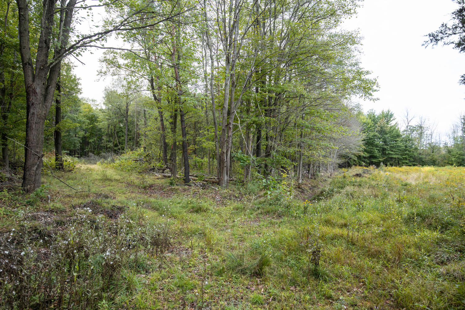 1435 Wisconsin Rd Derby NY-large-001-003-Land-1500×1000-72dpi
