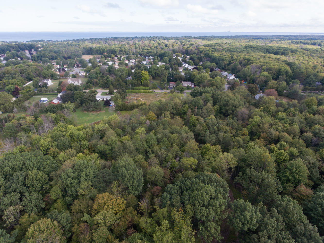 1435 Wisconsin Rd Derby NY-large-005-006-Aerial-1335×1000-72dpi